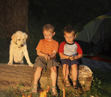 Two boys and a dog by a campfire